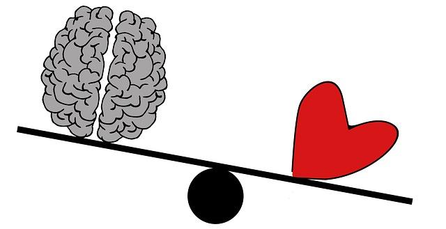 Herz oder Hirn – oder sind beide bekloppt